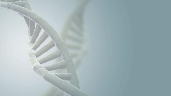 dna-20130918-size-598